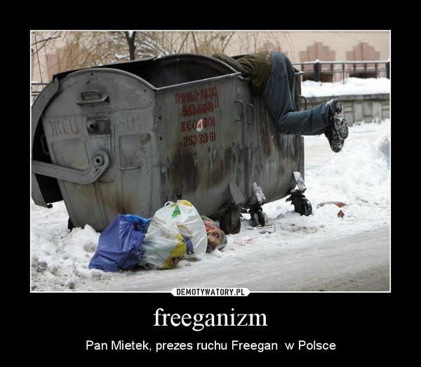 Freeganizm – dlaczego ludzie jedzą śmieci?