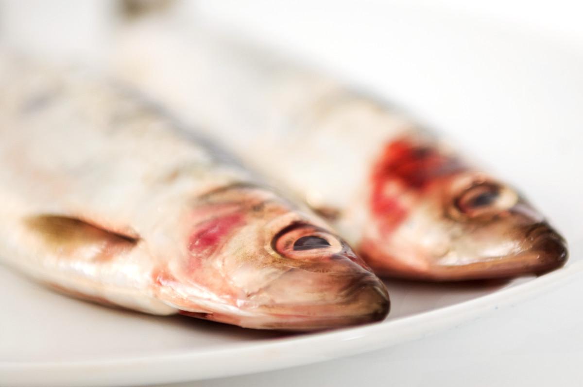 TOP 100 produktów #50 – śledź i czy wszystkie ryby są zdrowe?