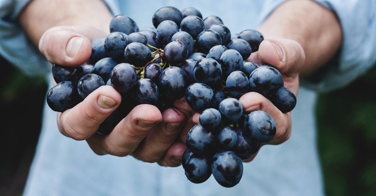 #58 ciemne winogrona