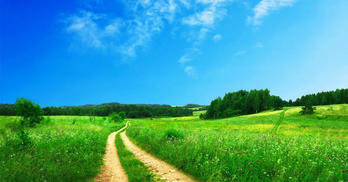 7 sposobów, jak szybko zyskać energię na wiosnę